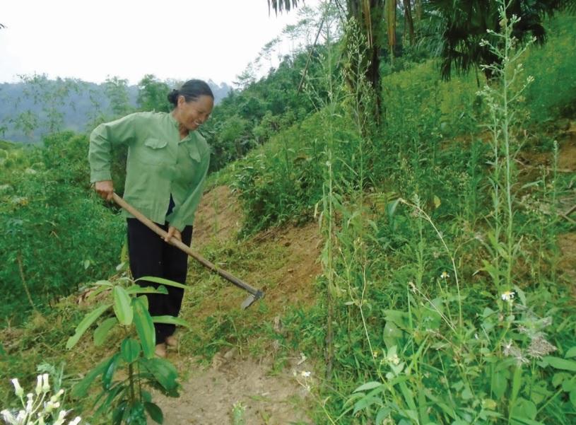 Từ việc phát triển kinh tế rừng nhiều hộ dân trên địa bàn huyện Chợ Đồn đã vươn lên thoát nghèo.