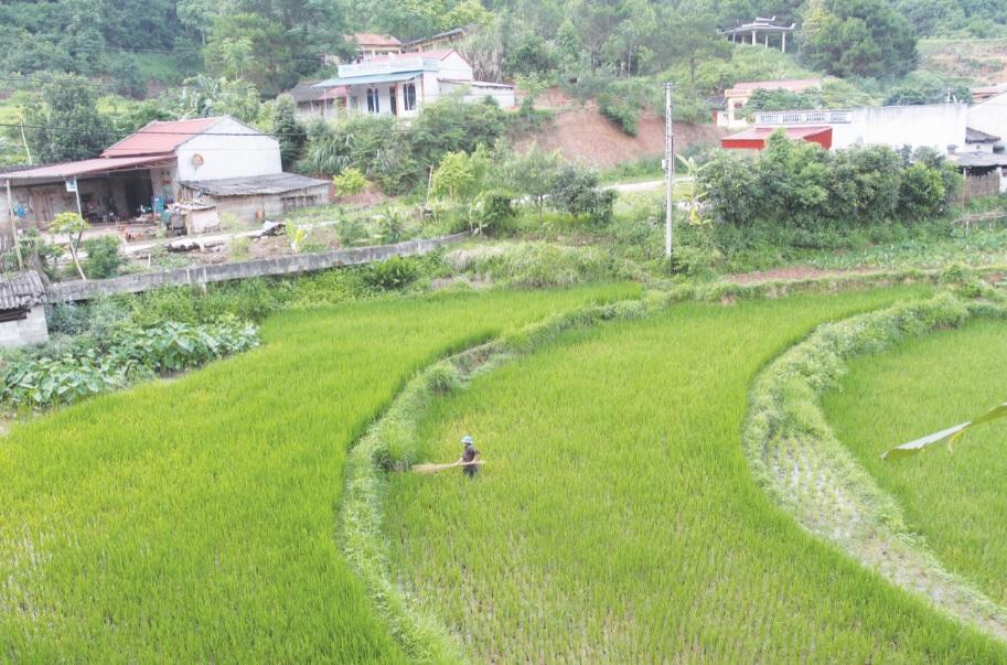 Nhiều địa bàn biên giới hiện rất thiếu lao động, nhất là lao động trẻ. (Ảnh chụp tại xã biên giới Thanh Lòa, huyện Cao Lộc, Lạng Sơn)