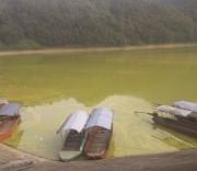 Hồ Gò Miếu là một trong ba hồ lớn nhất tỉnh Thái Nguyên đang bị ô nhiễm. Hồ Gò Miếu là một trong ba hồ lớn nhất tỉnh Thái Nguyên đang bị ô nhiễm.
