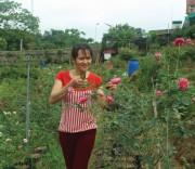 Chị Sớm chăm sóc vườn hoa hồng của gia đình.