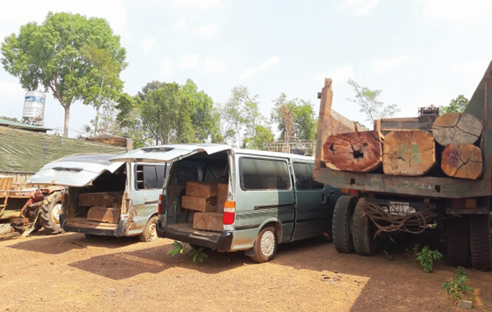 Các xe chở gỗ lậu bị bắt giữ tại Hạt Kiểm lâm.