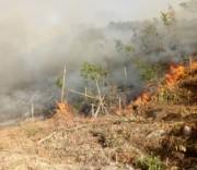 Cháy rừng ở khu vực Đá Nhảy, xã Thanh Trạch, huyện Bố Trạch (Quảng Bình).