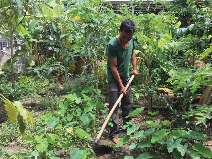 Già làng A Khunh dọn dẹp, chăm sóc cây trồng trong vườn nhà.