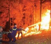 Lực lượng chức năng vất vả khống chế cháy rừng.