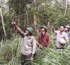 Giữ rừng