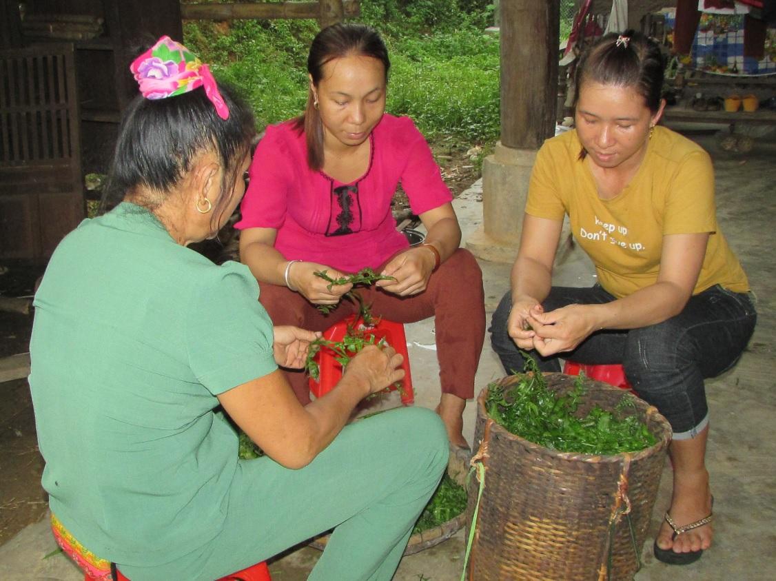 Người dân bản Khe Rạn chế biến các món ăn từ rau rừng phục vụ du khách.