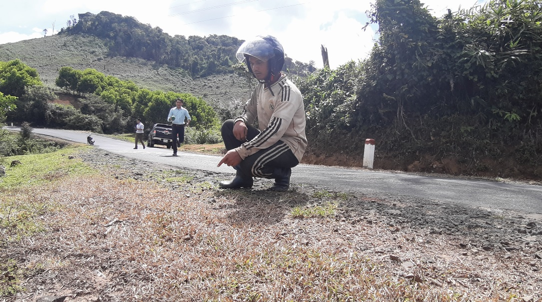 Người dân phản ánh hành lang Quốc lộ 24 đoạn qua xã Hiếu bị xịt thuốc cỏ.