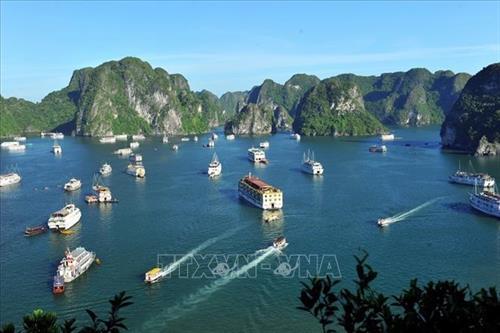 Hằng năm, Vịnh Hạ Long đón từ 2,5 - 2,7 triệu lượt khách, trong đó có 1,4 triệu lượt khách quốc tế đến tham quan, du lịch. Ảnh: Minh Đức - TTXVN