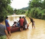 cầu tràn sông Quyền