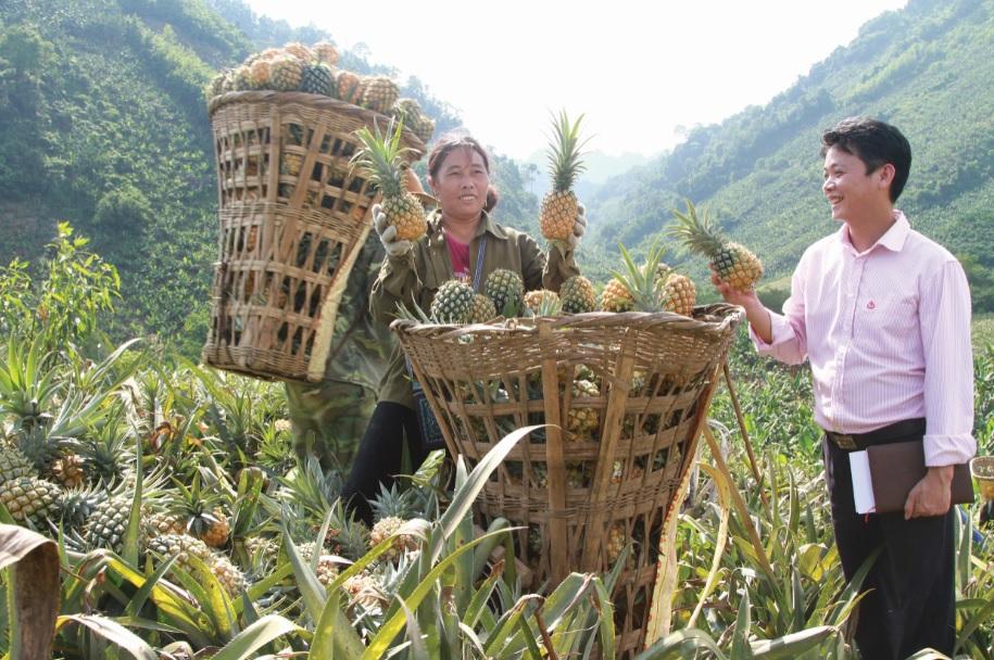 Người nghèo ở các xã nghèo của tỉnh Lào Cai có thêm cơ hội thoát nghèo từ nguồn vốn tín dụng chính sách.