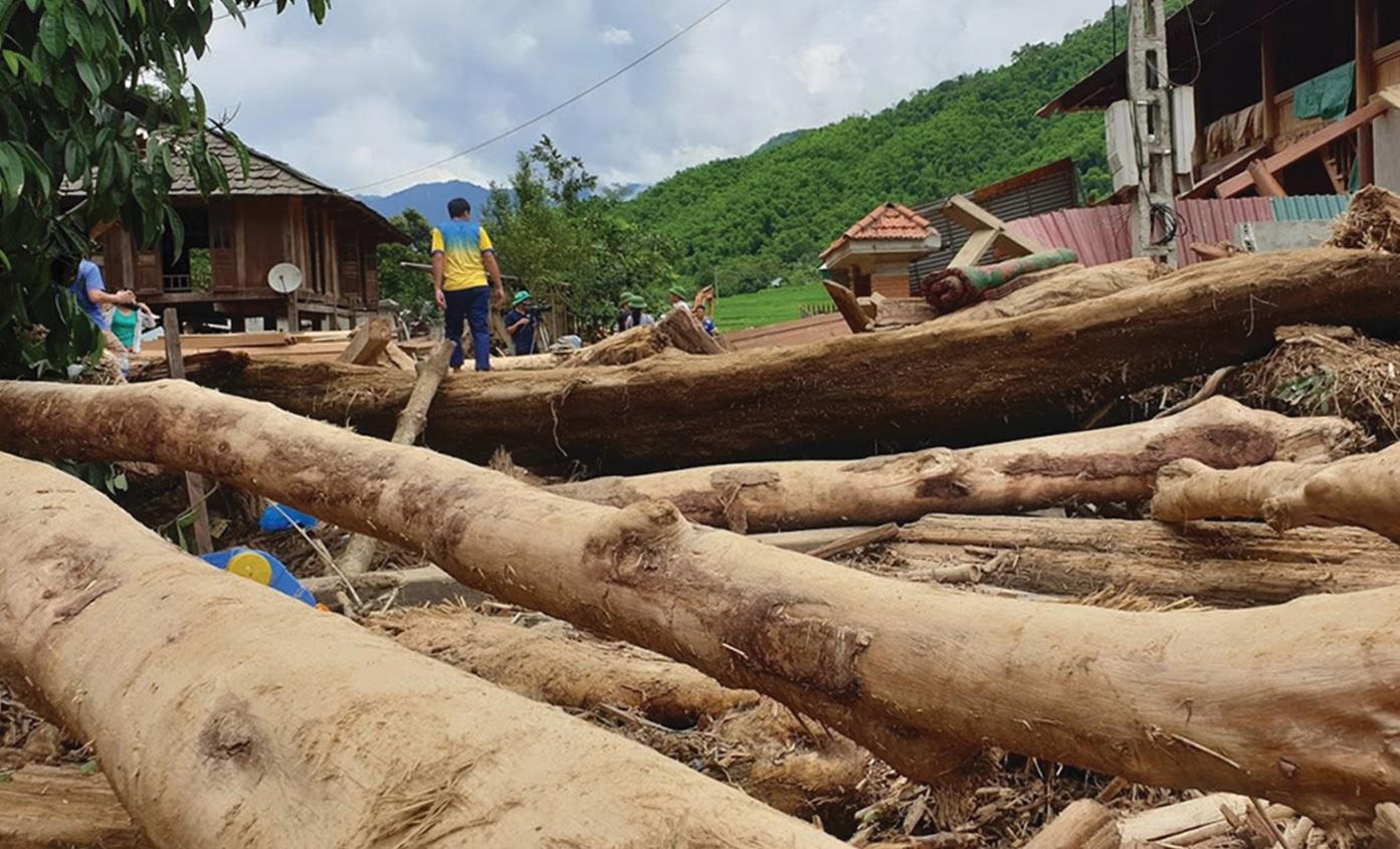 Những thân gỗ lớn từ biên giới Việt-Lào là một trong những nguyên nhân chính gây ra thiệt hại.