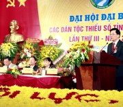 Đại hội Đại biểu các DTTS